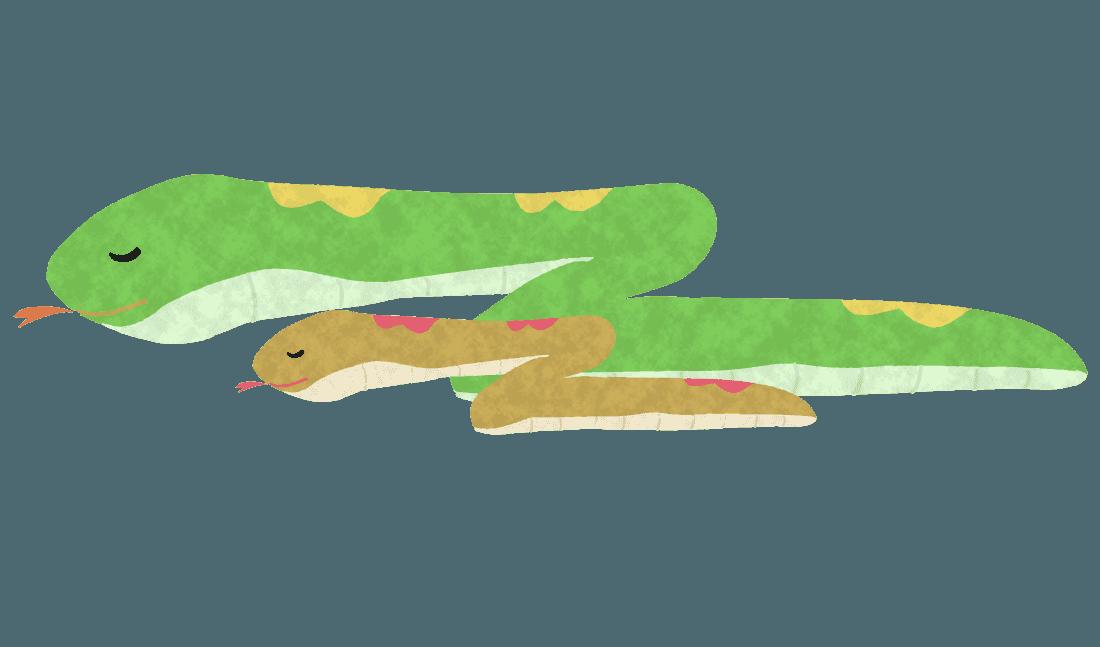 親子で眠る蛇イラスト