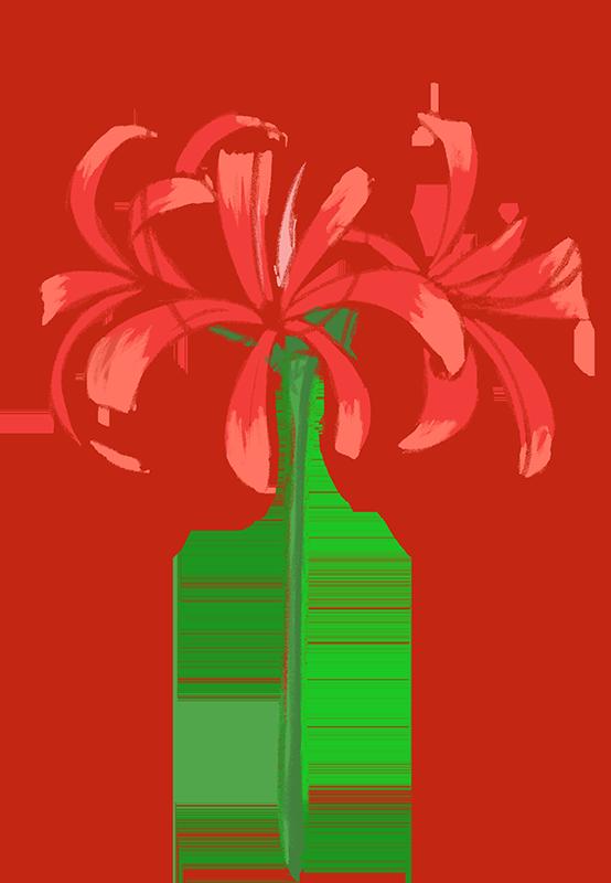 赤い彼岸花のイラスト