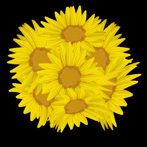 ひまわり花びら飾りのイラスト