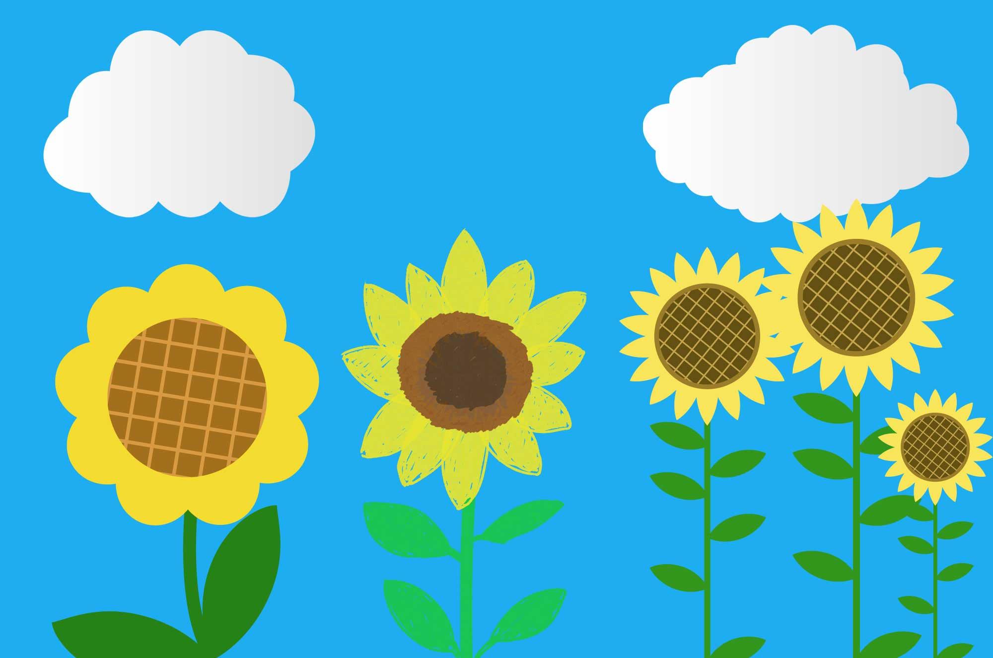 ひまわりイラスト - フリーで使える可愛い向日葵素材