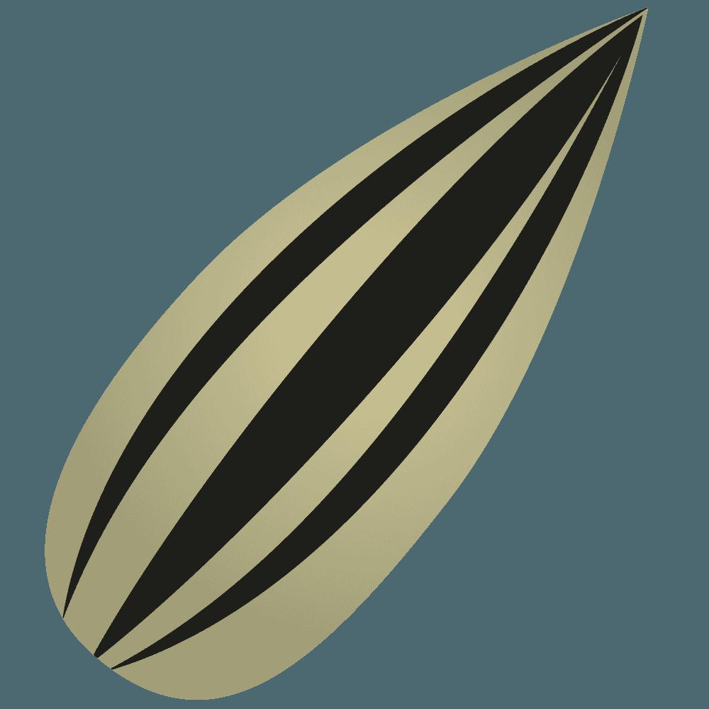 ひまわりの種のイラスト