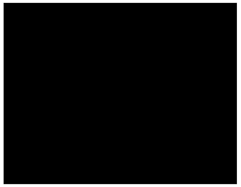 広島の大陸シルエット