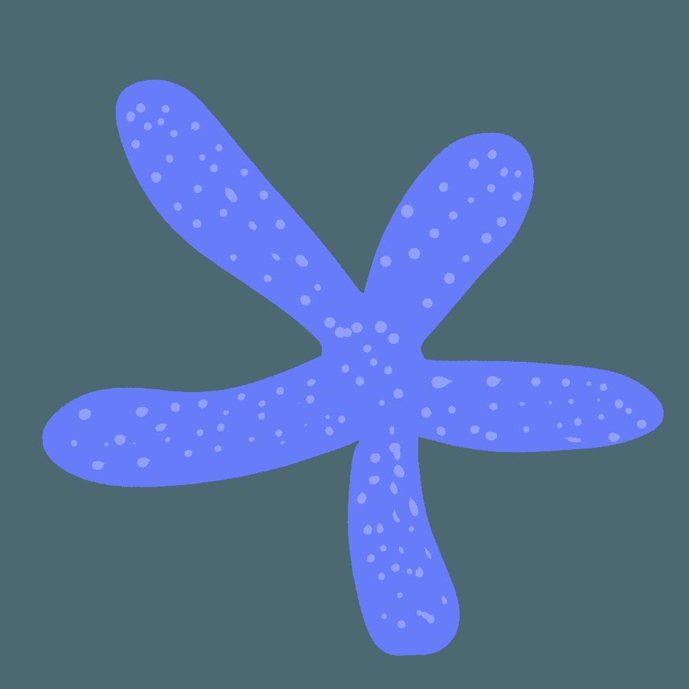 青い南国のヒトデのイラスト