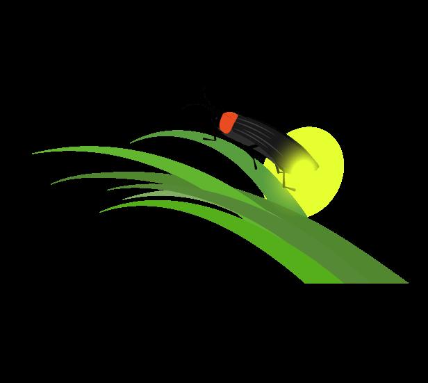 草とほたるのイラスト