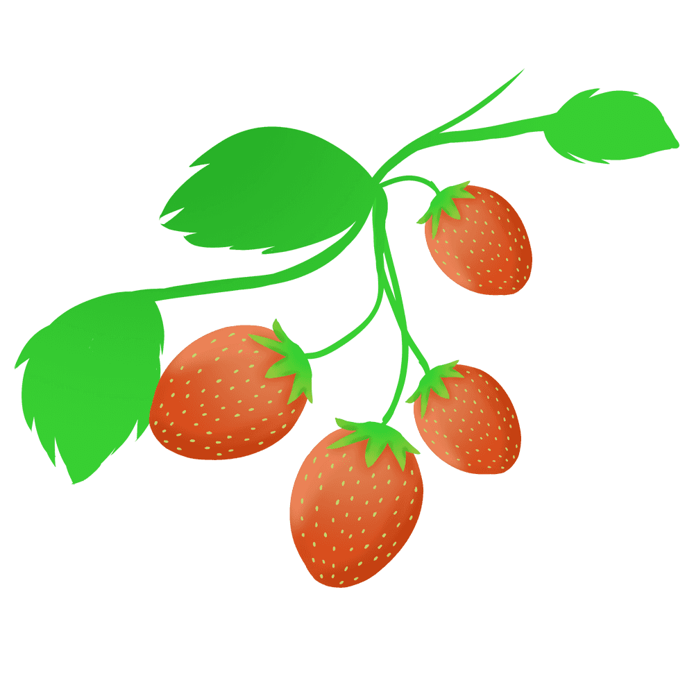 いちごと葉っぱイラスト