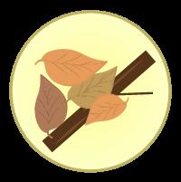 枯葉アイコンのイラスト