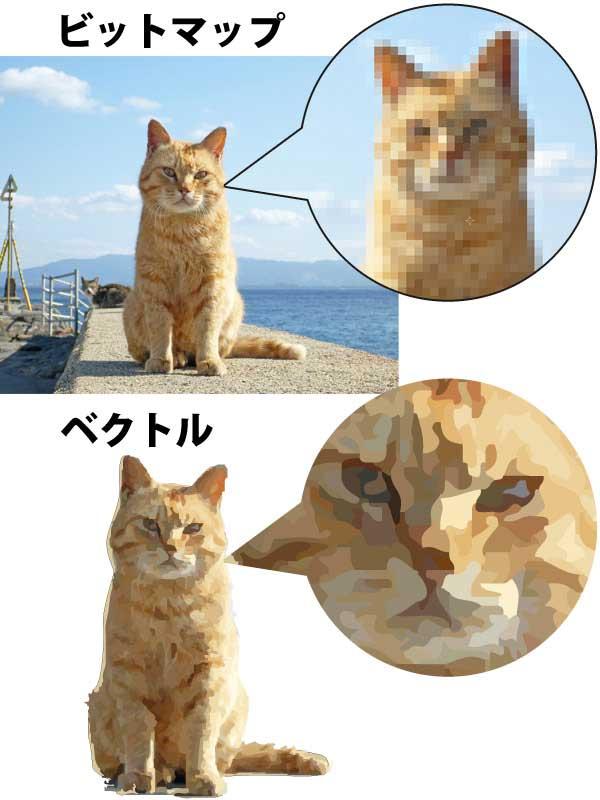ビットマップ画像の猫の写真と ベクトル画像の猫のイラスト