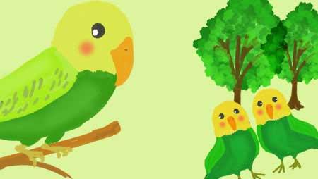 インコイラスト - 愛らしくて可愛い鳥のフリー素材集