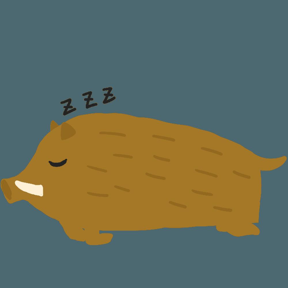 寝ているイノシシイラスト