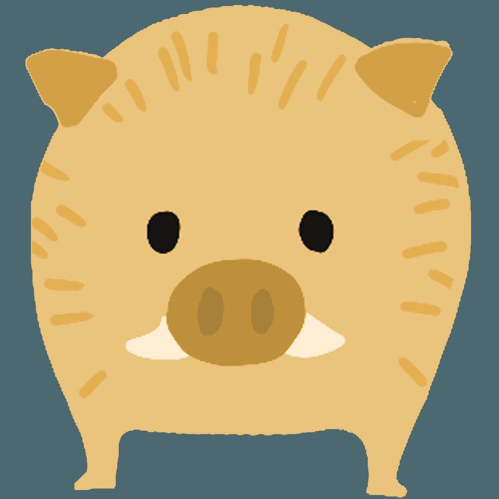 子供のイノシシ正面からのイラスト
