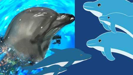 イルカイラスト - ジャンプする可愛い海の動物素材