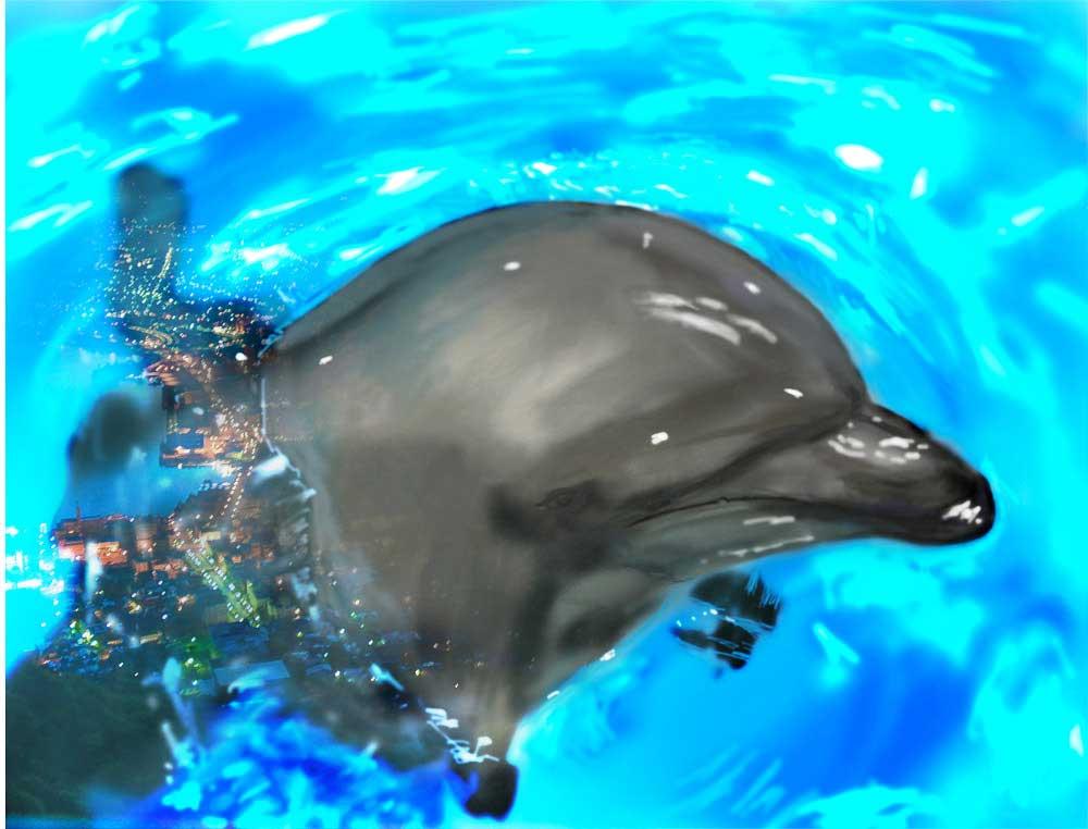 海面から顔出すイルカのイラスト