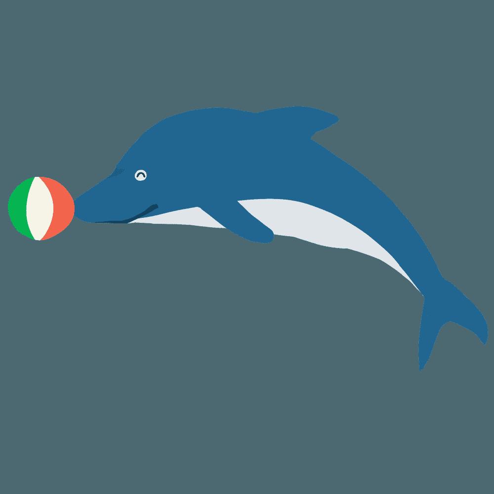 ジャンプするイルカとボールのイラスト