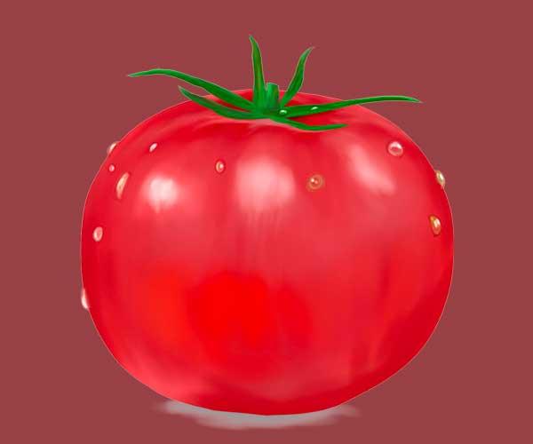 リアルタッチでクリスタで描いたトマトの絵