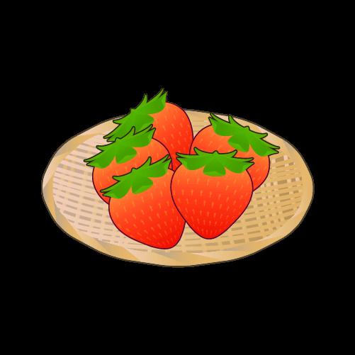 ザルに盛られたいちごのイラスト2