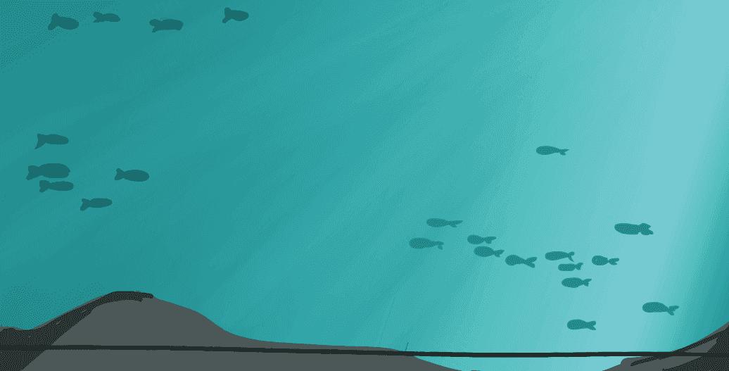 ジンベエザメの水槽イラスト
