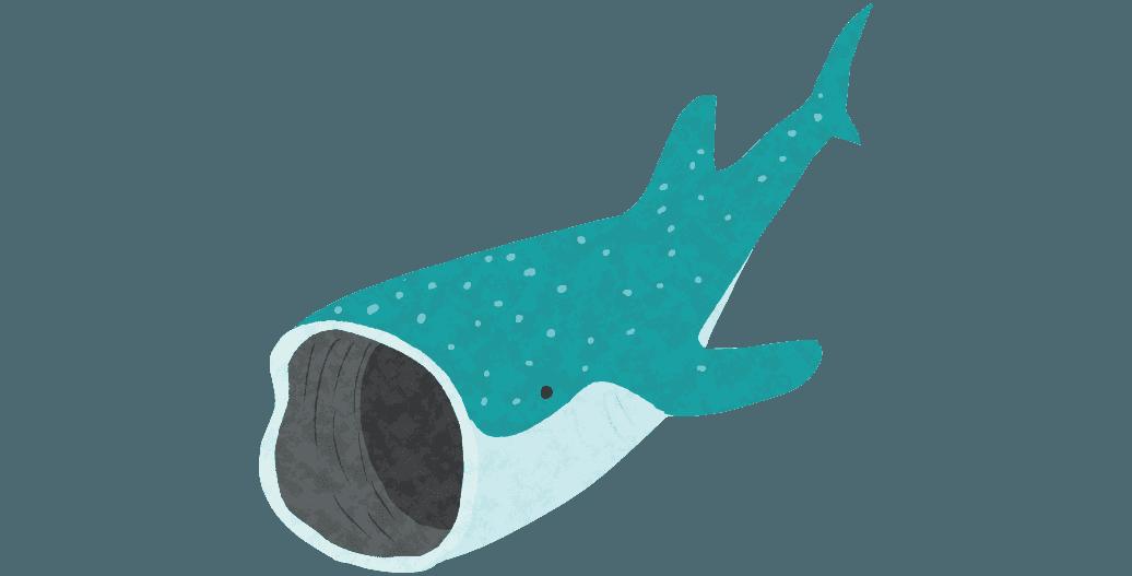 プランクトンを食べるジンベエザメジンベエザメイラスト