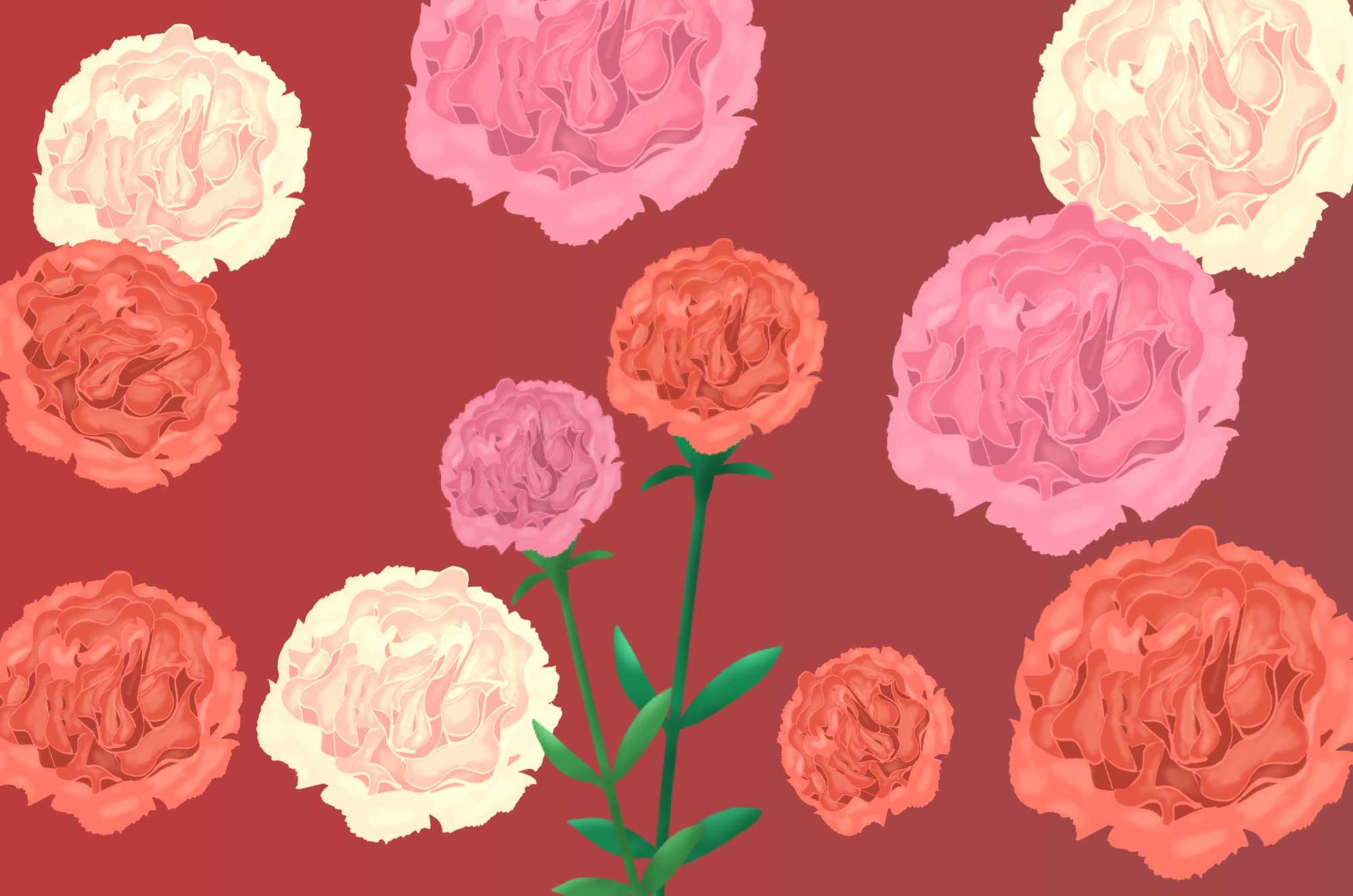 カーネーションの無料イラスト - カラー豊富な花素材