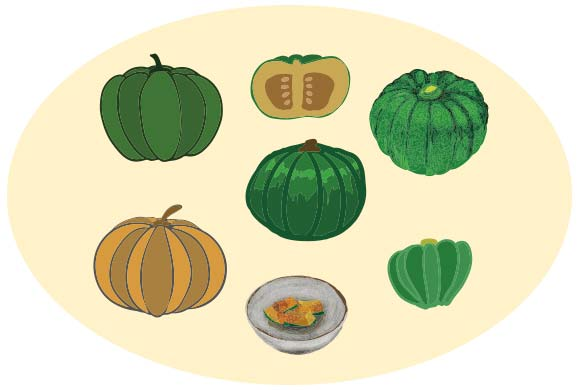 かぼちゃのベクター素材