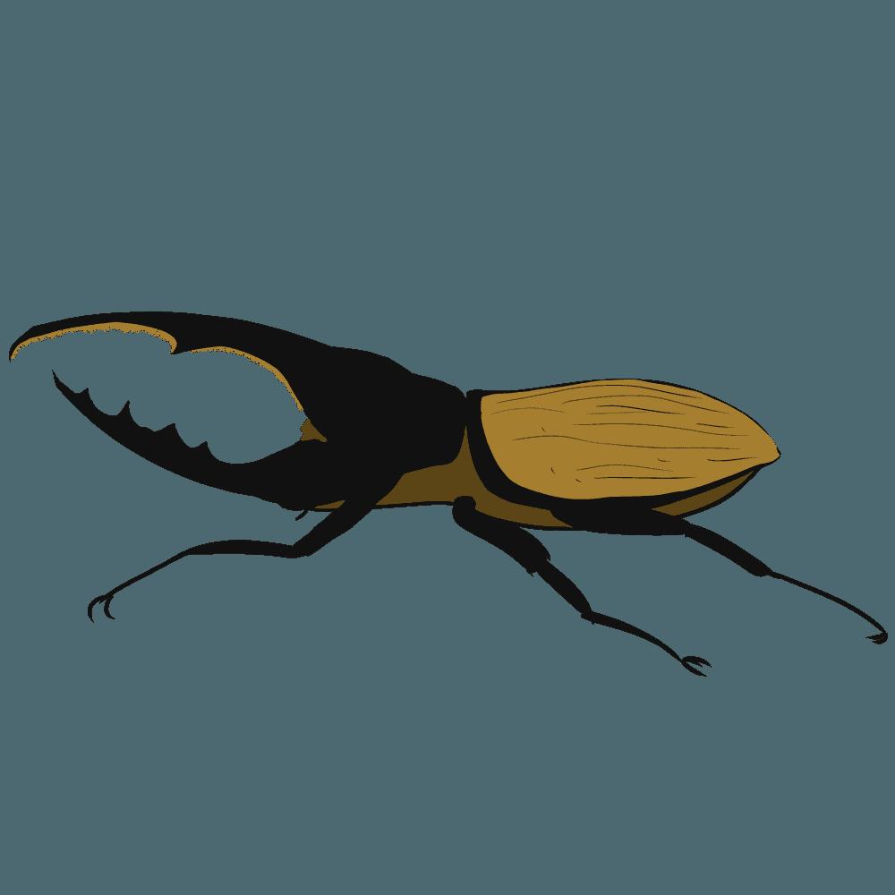 ヘラクレスオオカブトムシのイラスト