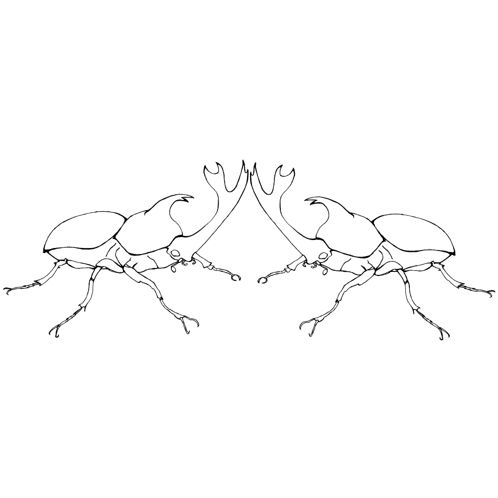 カブトムシの決闘の線画イラスト