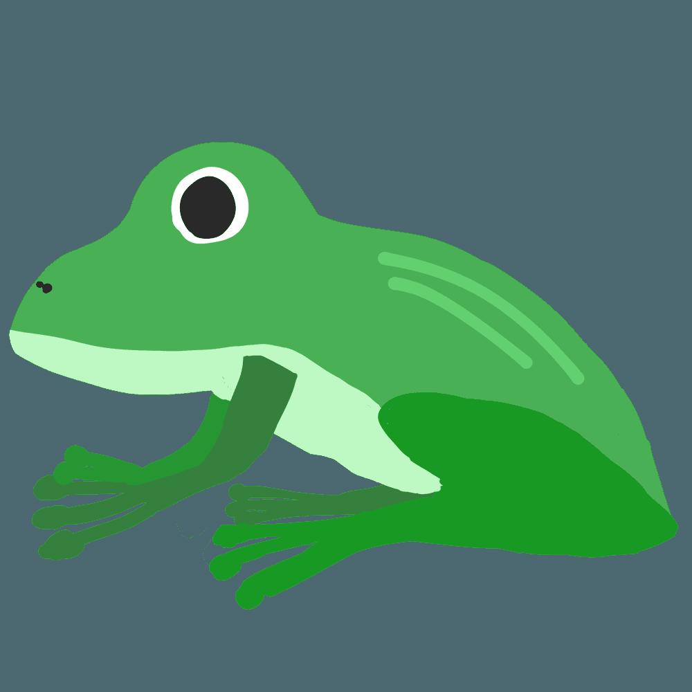 可愛い蛙イラスト