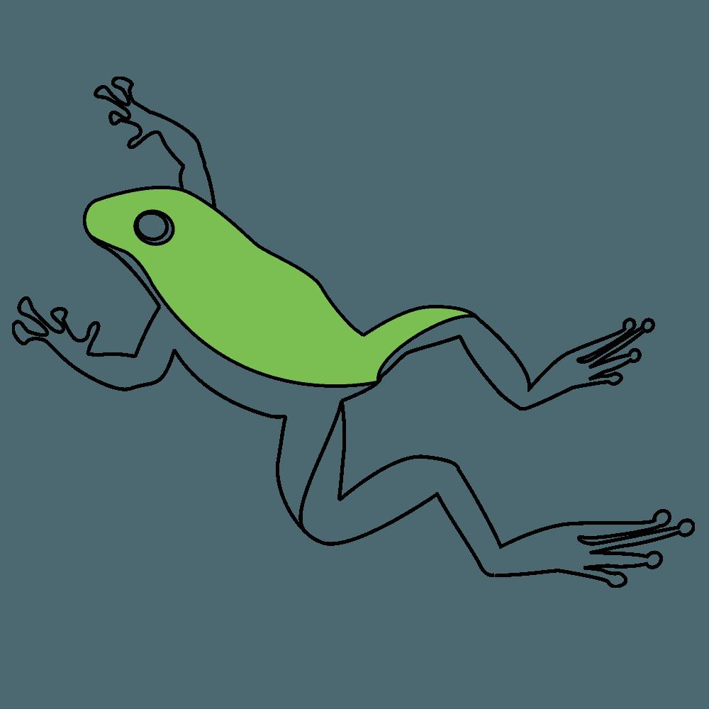 ジャンプ中のカエルイラスト
