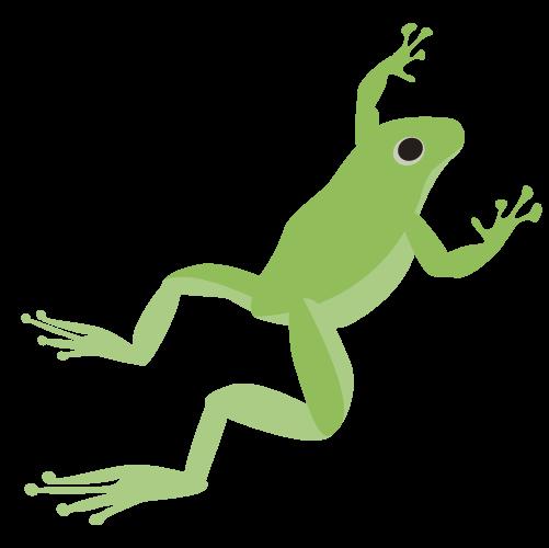 ジャンプするカエルのイラスト