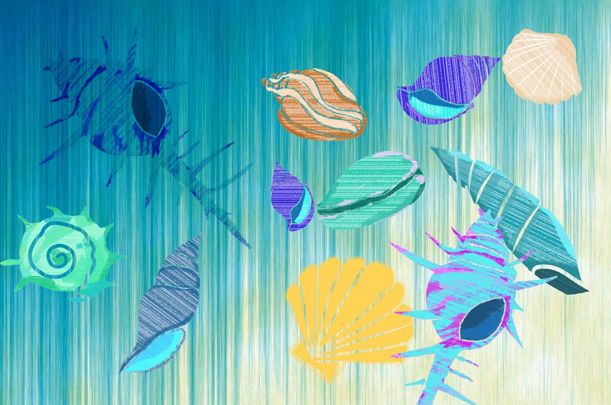 可愛い貝殻イラスト - 海の記憶を封じ込めた不思議な素材