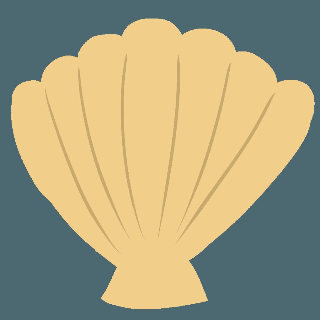 ホタテの貝殻クレヨン風イラスト
