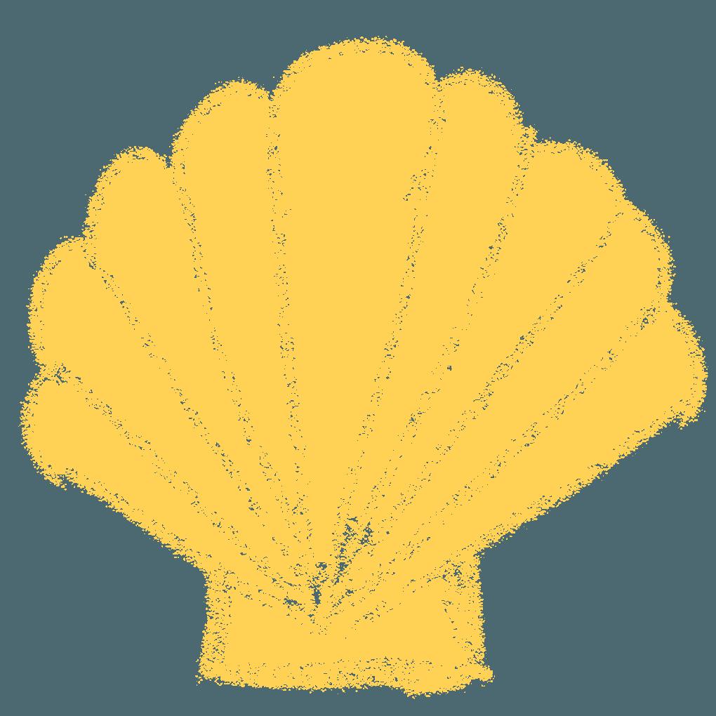 手書きのホタテの貝殻イラスト