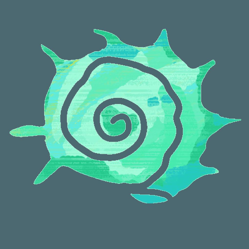 リンボウガイの貝殻イラスト