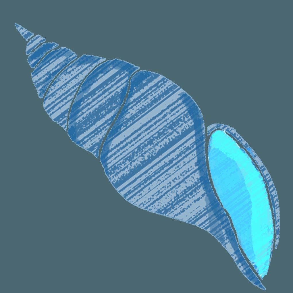 可愛い貝殻イラスト