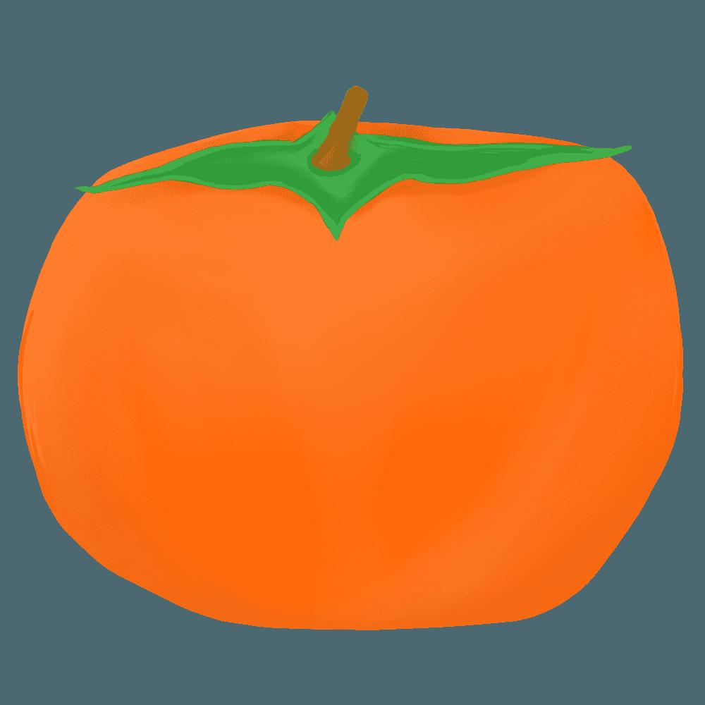 ちょっとリアルな柿イラスト