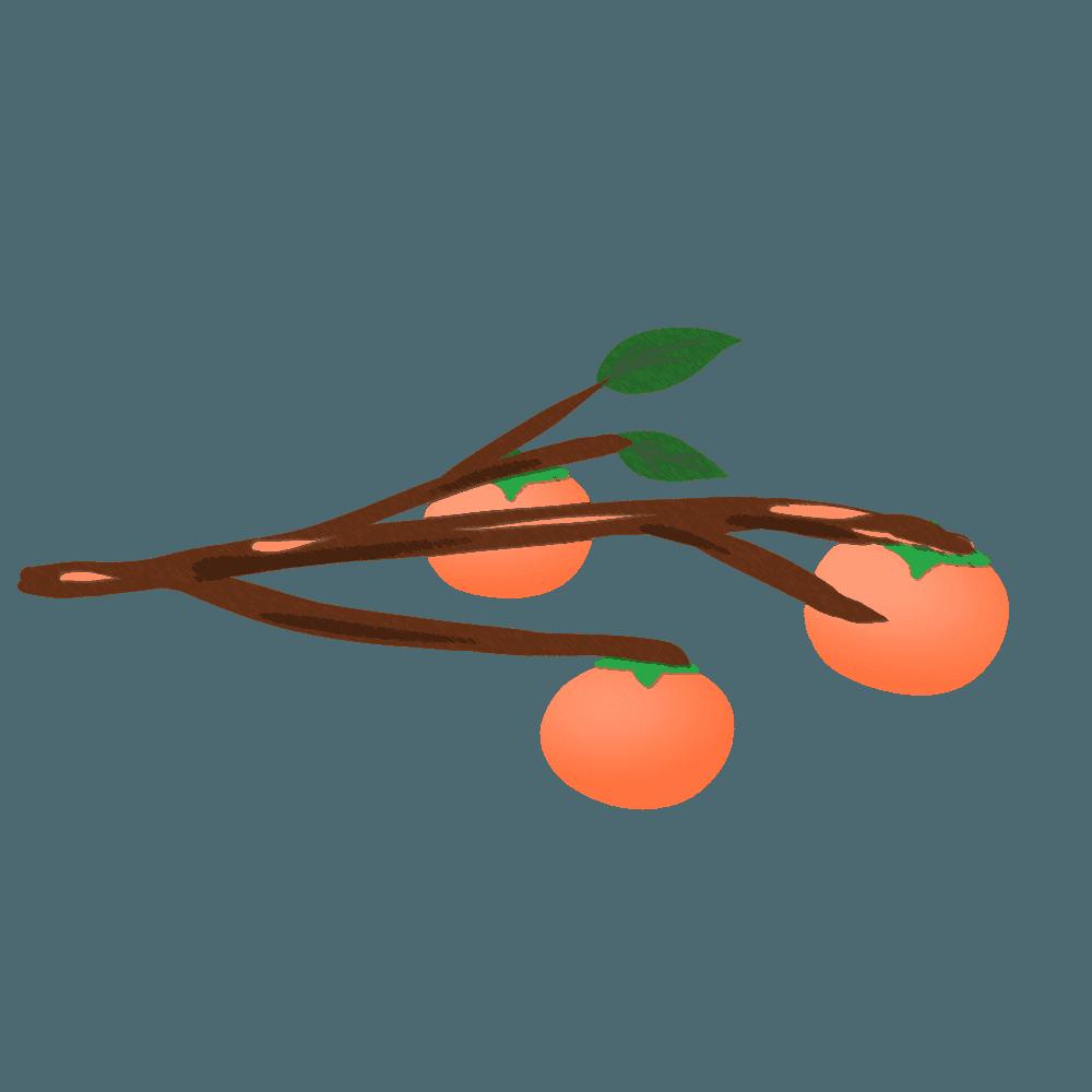 柿の木と柿イラスト