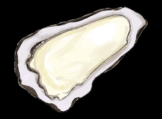 牡蠣のイラスト2