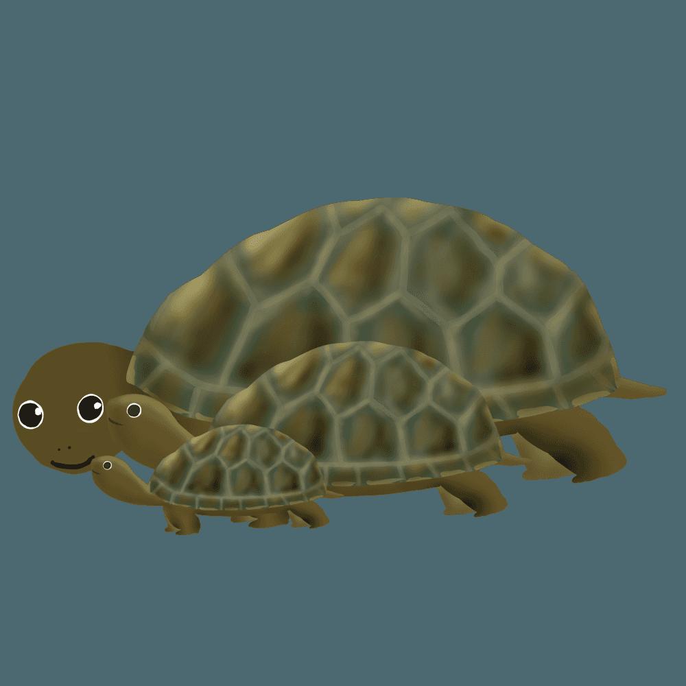 食事をする陸亀の親子イラスト