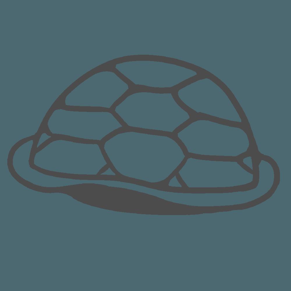 亀の甲羅の線画