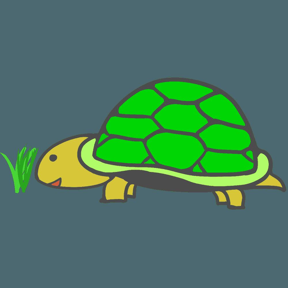 草を食べる亀イラスト
