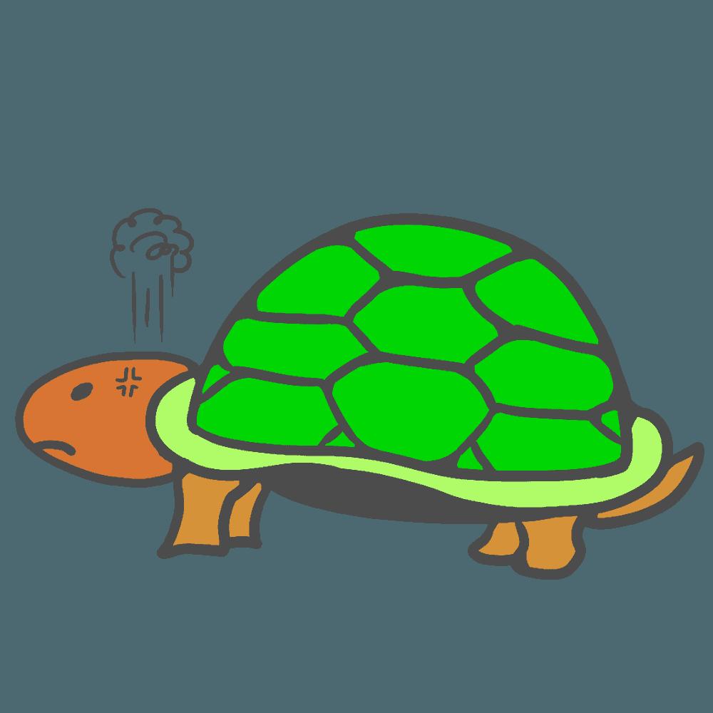 怒っている亀イラスト