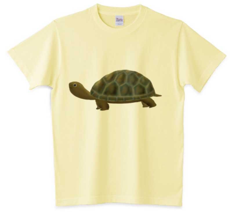 かわいい亀Tシャツ