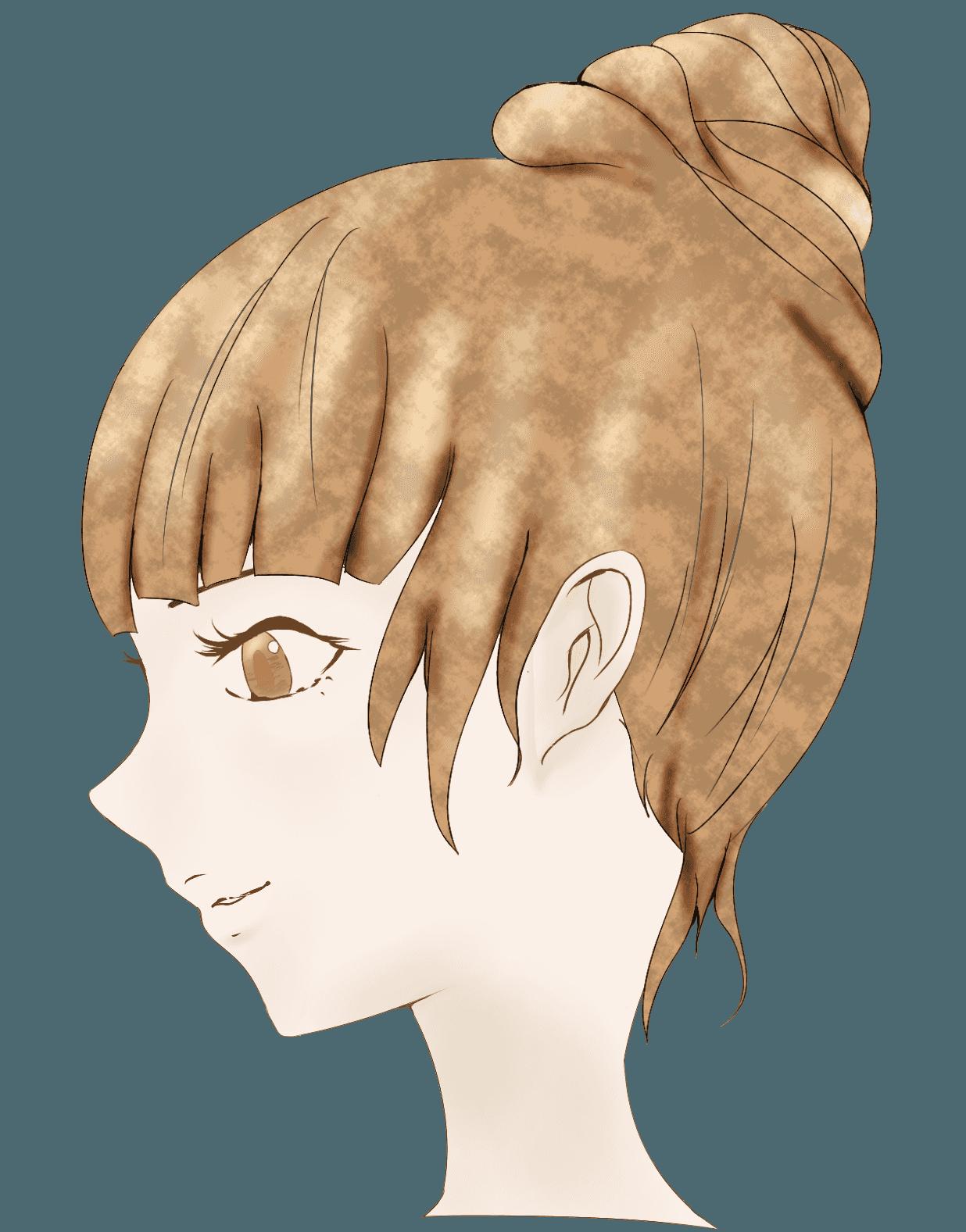 お団子ヘアーのサイドイメージのイラスト