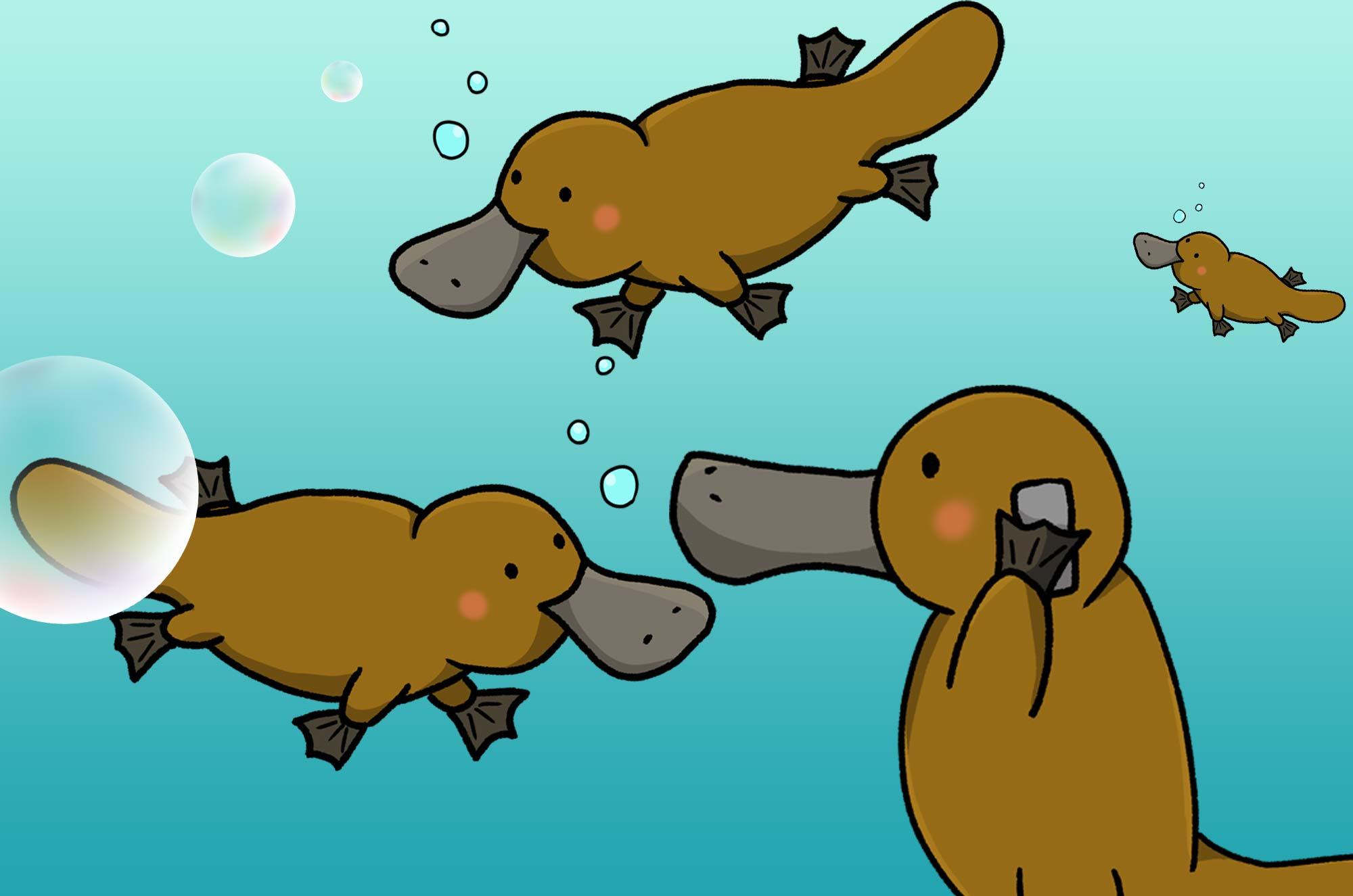 カモノハシのイラスト - 優雅に泳ぐ面白い水生動物素材