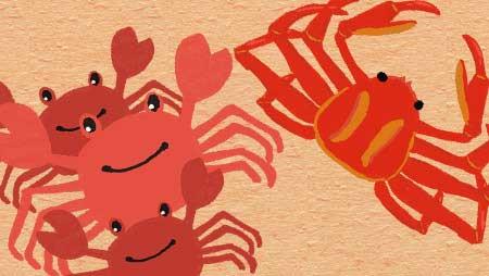 カニイラスト - 可愛い毛蟹やタラバ・サワガニの無料素材