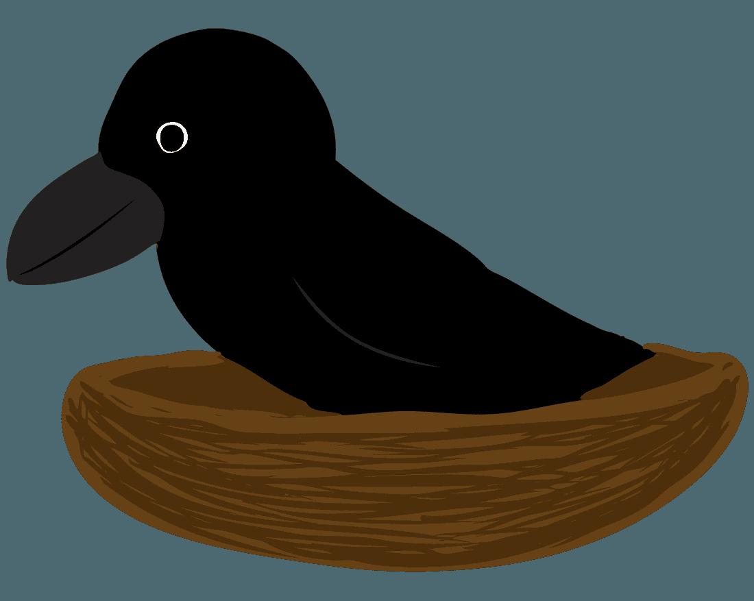 カラスとカラスの巣のイラスト