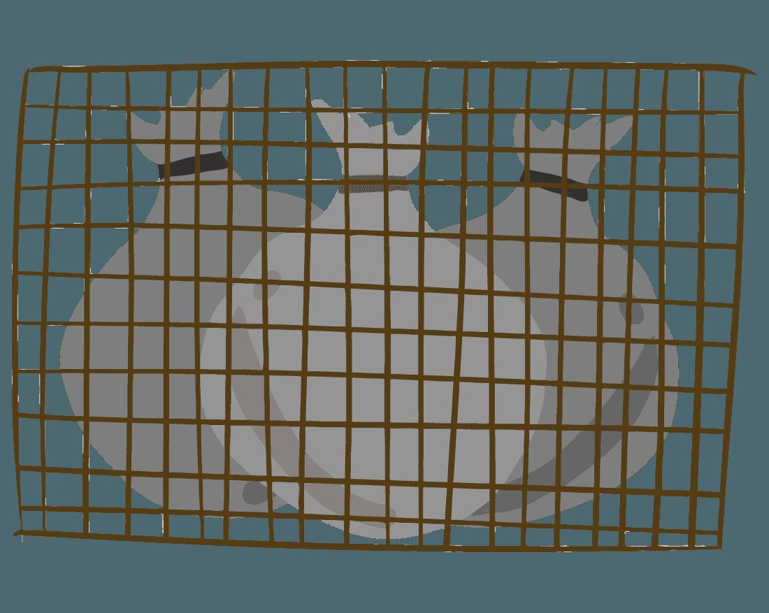 ゴミと金網のイラスト