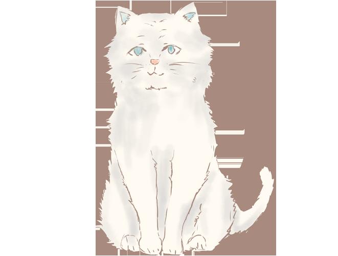 手書きのペルシャ猫のイラスト