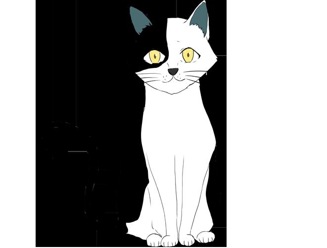 白黒ブチ猫のイラスト