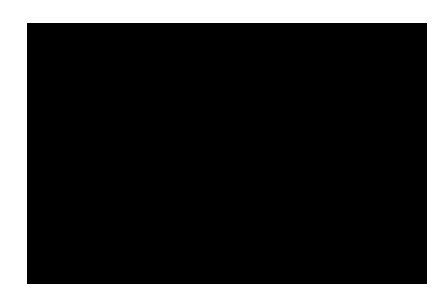 剣道のイラスト(シルエット)