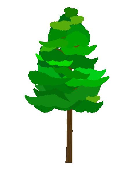 杉の木のイラスト